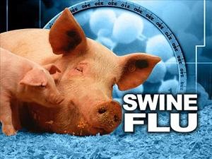 شیوع آنفلوانزای خوکی در گرجستان/ تعطیلی دانشگاهها - 0