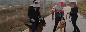 وضعیت دختری که سگها در پارک لواسان به او حمله کردند: تحت درمان روانپزشک است/ با قرص میخوابد/ کابوس میبیند و هر نیم ساعت از خواب میپرد - 0