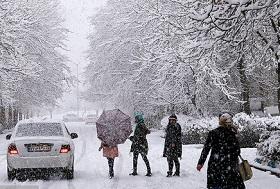 بارش برف در 11 استان/ امواج 3 متری در خیلج فارس - 0