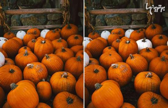 میتوانید تفاوتهای هالووینی زیر را پیدا کنید؟ - 1
