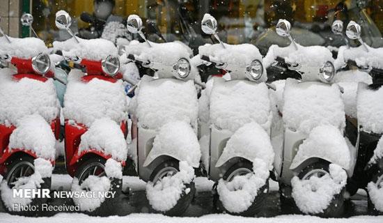 برف سنگین در آسیا، اروپا و روسیه - 10