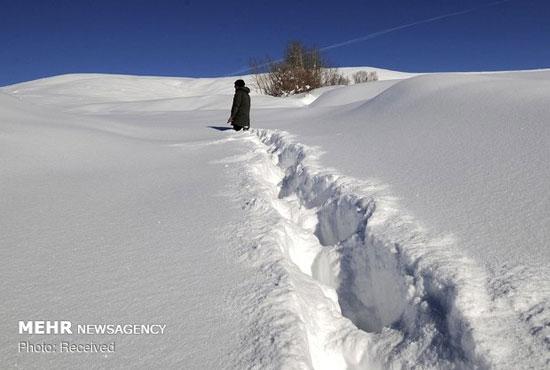 برف سنگین در آسیا، اروپا و روسیه - 13