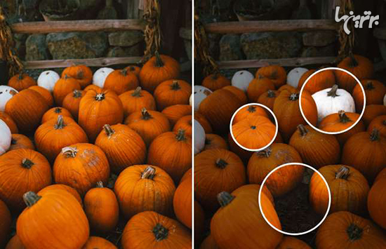 میتوانید تفاوتهای هالووینی زیر را پیدا کنید؟ - 9