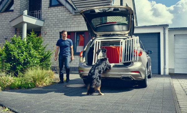 چگونه یک سگ باعث بهبود طراحی داخلی فورد فوکوس استیشن شد؟ - 19