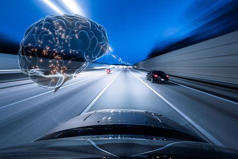 مغز ما هنگام رانندگی چه میکند؟