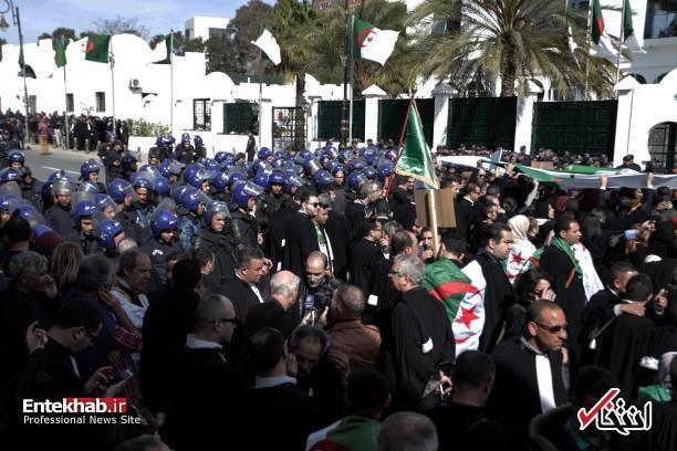 تصاویر: تظاهرات گسترده وکلا علیه عبدالعزیز بوتفلیقه - 8