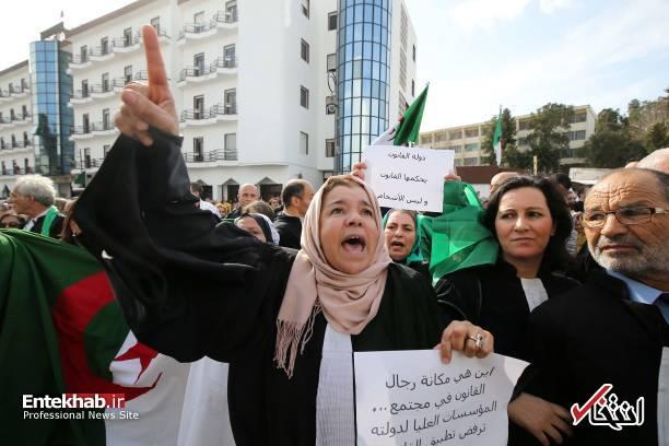 تصاویر: تظاهرات گسترده وکلا علیه عبدالعزیز بوتفلیقه - 14