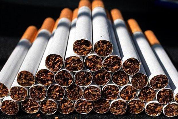 واردات سیگار با ارز ۴۲۰۰ تومانی/ فوت سالانه ۶۰ هزار نفر براثر سیگار و مواد مخدر - 0