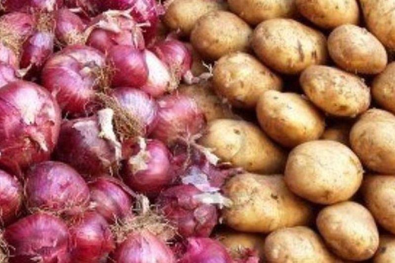 صادرات سیب زمینی و پیاز ممنوع شد - 0