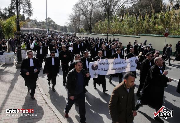 تصاویر: تظاهرات گسترده وکلا علیه عبدالعزیز بوتفلیقه - 5