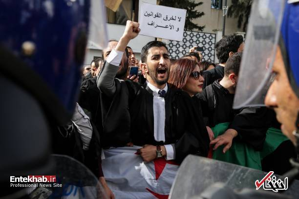 تصاویر: تظاهرات گسترده وکلا علیه عبدالعزیز بوتفلیقه - 11