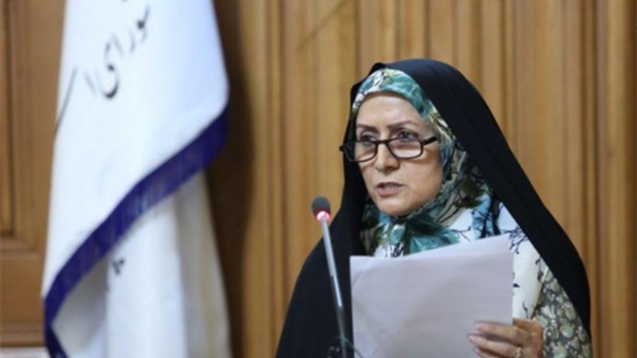 انتقاد عضو شورای شهر تهران از رودخانهخواری
