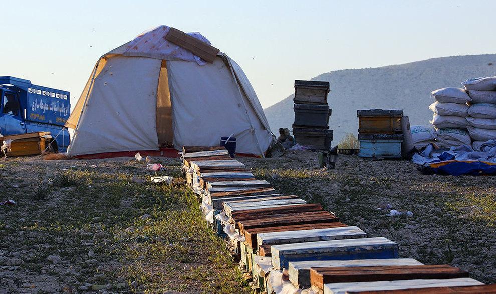 (تصاویر) گشتی در هرمزگان پایتخت زمستانی عسل - 7