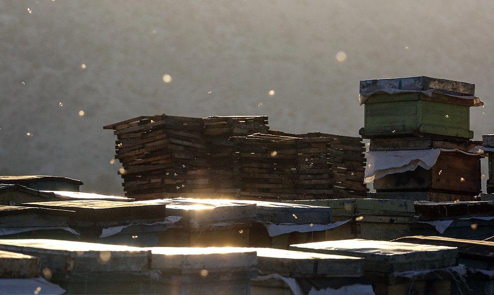 (تصاویر) گشتی در هرمزگان پایتخت زمستانی عسل - 6
