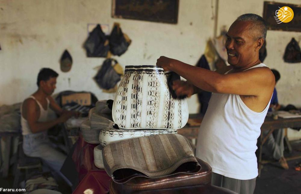 (تصاویر) سلاخی مارها برای ساخت کیف و کفش! - 22