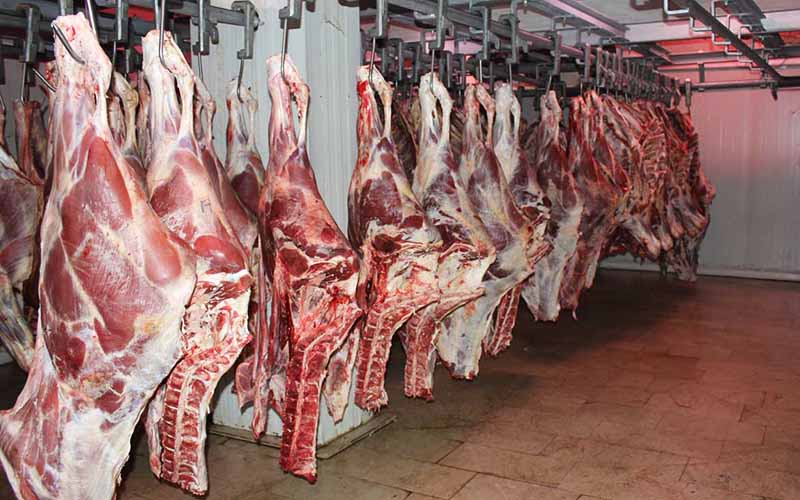 پلمب یک رستوران در پی کشف ۱۶۰۰ کیلوگرم گوشت - 0