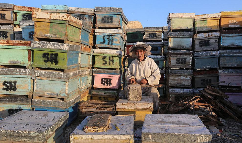 (تصاویر) گشتی در هرمزگان پایتخت زمستانی عسل - 12