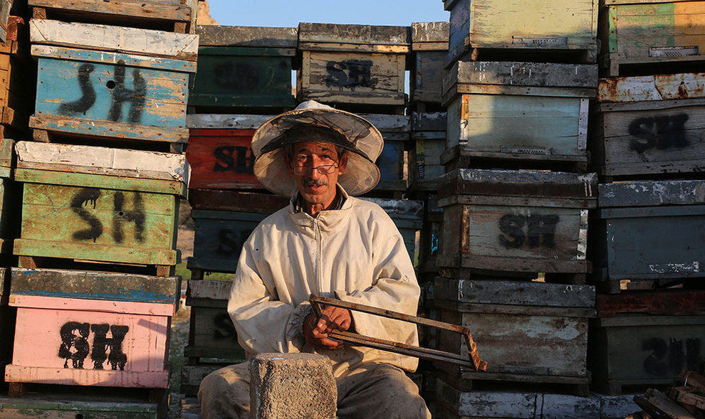 (تصاویر) گشتی در هرمزگان پایتخت زمستانی عسل - 13