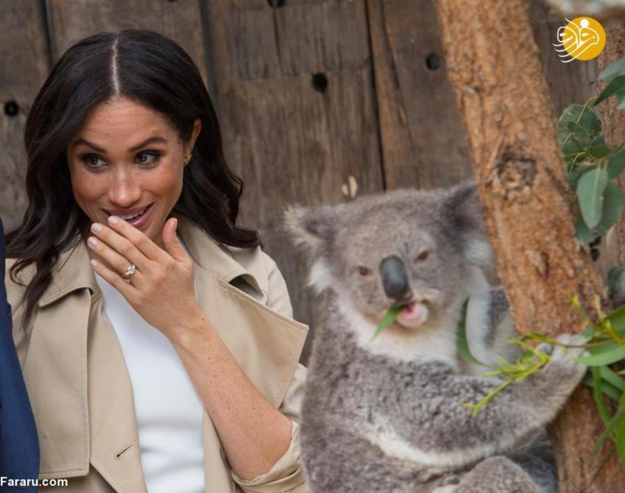"""(تصاویر) اعلام خبر بارداری """"مگان مارکل"""" در سفر به استرالیا - 12"""