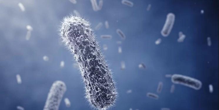 درمان بی سابقه ایدز با پیوند سلولهای بنیادی - 2
