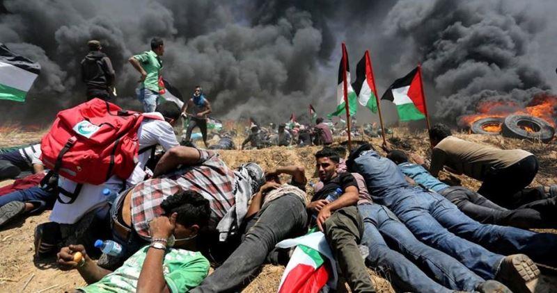 ۹ فلسطینی درغزه به ضرب گلوله صهیونیستها زخمی شدند