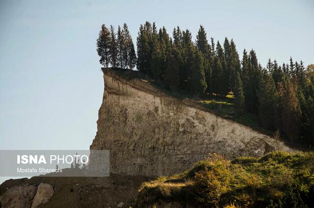 کاهش جنگلهای مازندران