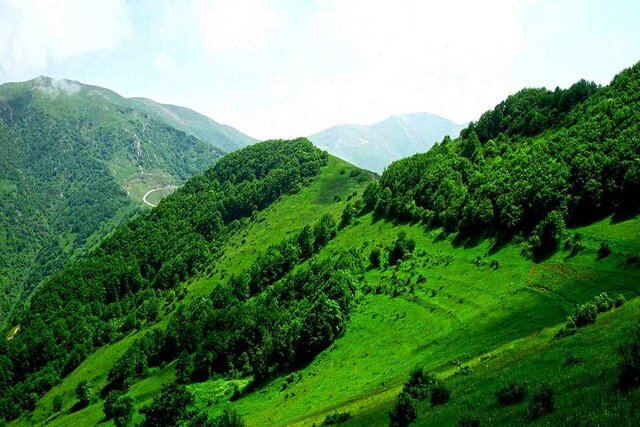 ثبت بهترین تعطیلات در تونل جنگلی و طویلترین پل چوبی طبیعی در گیلان