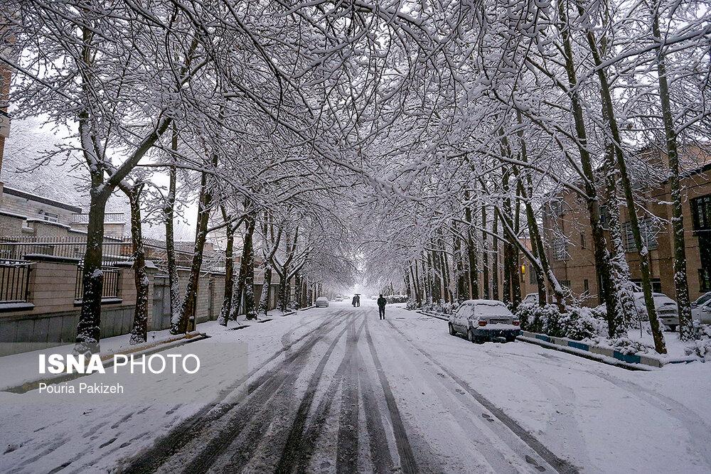 بارش سنگین برف در همدان - 14
