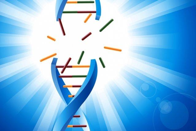 روش جدیدی برای بررسی مقاومت سلولهای سرطانی نسبت به دارو - 5