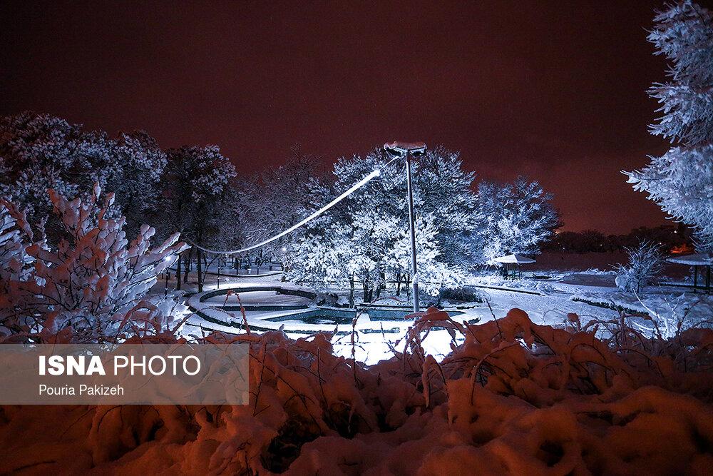 بارش سنگین برف در همدان - 17