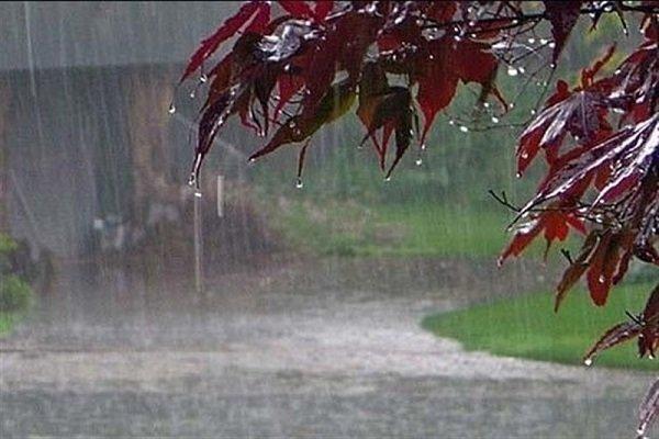 نورآباد رکورددار میزان بارندگی فارس شد