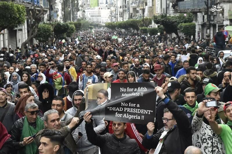 عکس/ ادامه ناآرامیها در خیابانهای الجزایر - 14