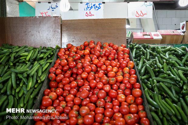 گشت سازمان تعزیرات حکومتی به مناسبت شب یلدا - 16