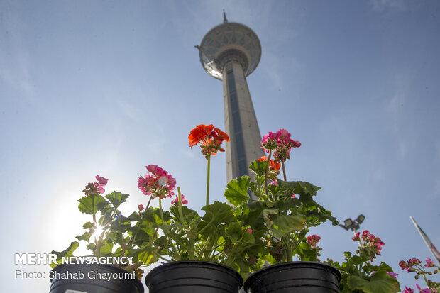 حال و هوای تهران در تعطیلات عید - 4
