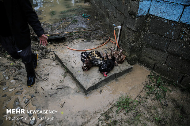 اولین روز نوروز سیل زدگان مازندران - 37