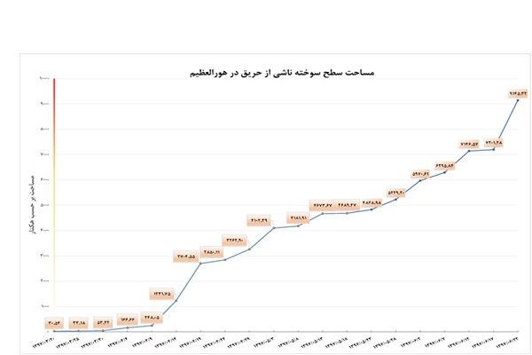 حریق هورالعظیم به بخش ایران سرایت کرد - 5