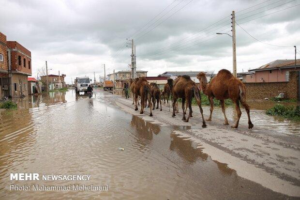 شدت گرفتن سیلاب در روستاهای استان گلستان - 21