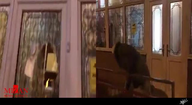 حمله به شیشههای ۴ مسجد با چکش در بیرمنگام انگلیس - 4