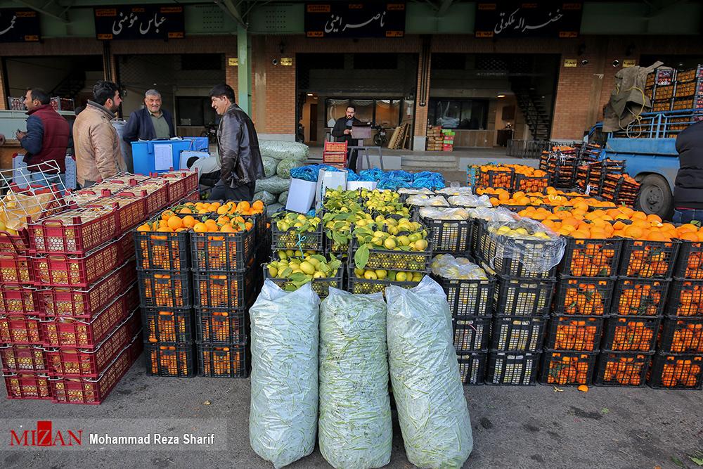 ارائه ۸۵ نوع میوه و محصول فرنگی در میادین میوه و تره بار/اولویت سازمان مدیریت میادین «مشتری مداری» است - 0