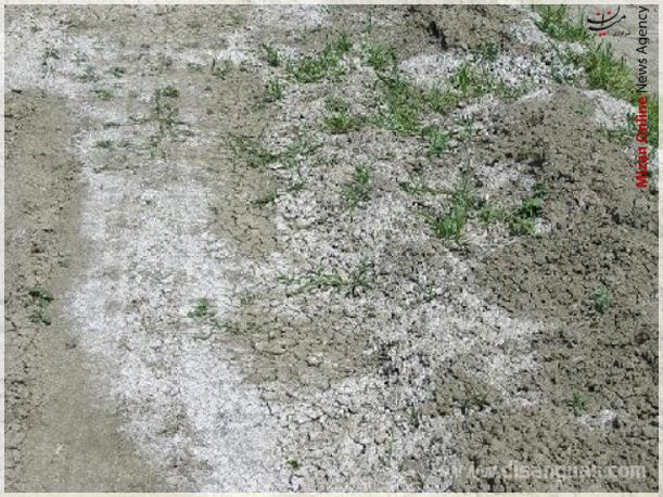 افزایش ۹۰ میلیون مترمکعبی حجم آب دریاچه ارومیه/ احداث اولین کارخانه خوراک آبزیان در خراسان رضوی/ خاک مازندران در مسیر شوری/سانحه هواپیمای مسافربری در تبریز - 48