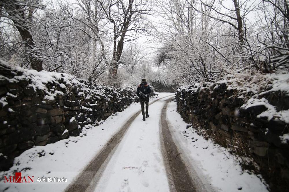 بارش باران در استانهای غربی کشور/ بارش برف در ارتفاعات البرز و تهران - 0