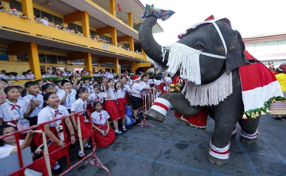 فیلی در حال اهدای هدیههای کریسمس به کودکان +عکس - 2