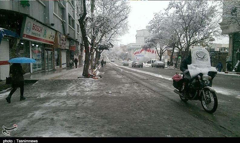 خوابِ زمستانیِ شهردار سنندج در روزهای برفی+تصاویر - 50
