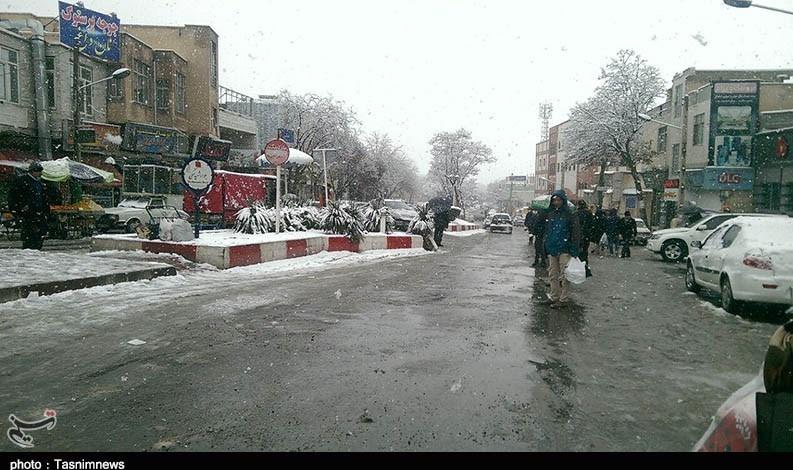 خوابِ زمستانیِ شهردار سنندج در روزهای برفی+تصاویر - 48